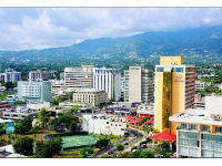 Photo credit: Wikimedia Commons - New Kingston, Jamaica.