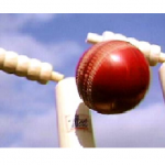 Former Jamaica Cricket Association President Calls For Coach To Go