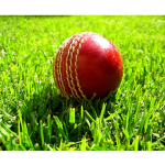 WICB Recognizes World Heritage Day