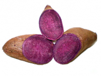 UWI Research Centre Discovers Anti-Cancer Properties In Purple Yam