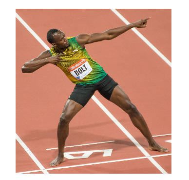 Photo Credit: Wikipedia - Usain Bolt,