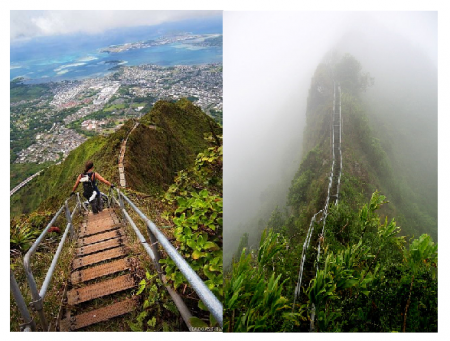 Photo Credit: Wikipedia - Haiku Stairs of Oahu, Hawaii.