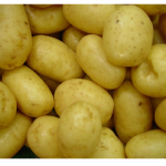Potato Used As Contraceptive Found Growing Inside Woman