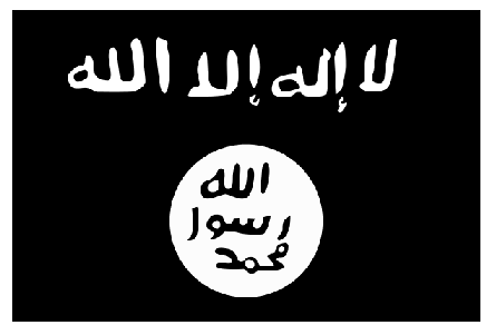 Photo Credit: Wikipedia - Flag in use by the al-Qaeda.