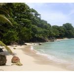 Jamaica's Boston Beach Oozes Joy And Pleasure