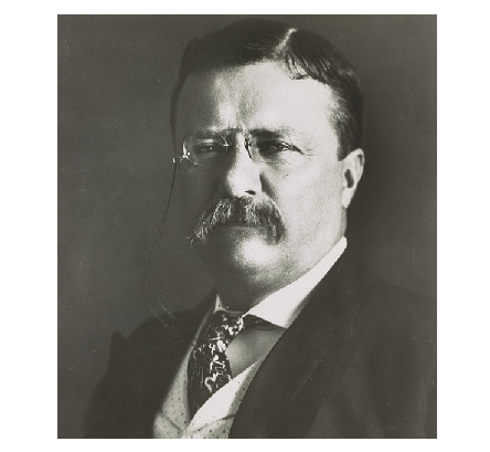 Theodore Roosevelt, former President of the United States.