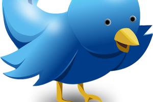 The Market Is Sweet On Tweet Of Twitter's Sale