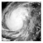 Typhoon Koppu Roars Into Philippines