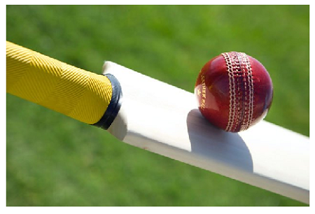 CWI Set To Go Separate Ways From T&T's Rebel Cricketers