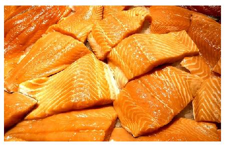 Genetically Modified Salmon