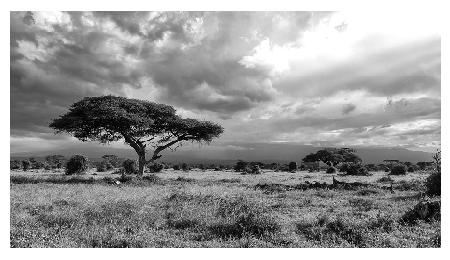 East Afrika