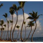Caribbean Tourism Sets New Performance Record