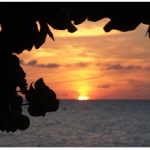 Going Jamaica This Summer?