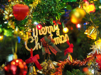 Merry Christmas From The Readers Bureau Family!