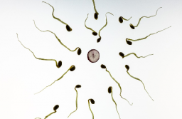 10 Factors That Can Lead To Male Infertility