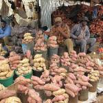 IMF Tells Zimbabwe — Get Help Quickly!