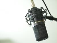 Advertisers Flee Talk Show Host Laura Ingraham's Program